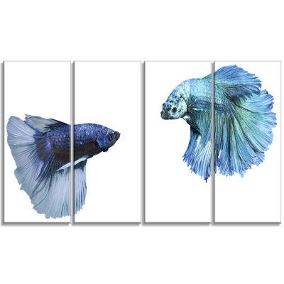 Fighting Fish Animal Canvas Art Print - 4 Panels