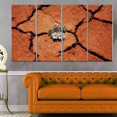 Flowers In Mountain Meadow At Sunset Large FlowerCanvas Wall Art - 4 Panels