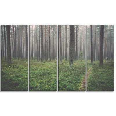 Foggy Dense Forest With Grass Modern Forest CanvasArt - 4 Panels