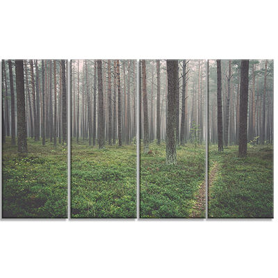 Designart Foggy Dense Forest With Grass Modern Forest CanvasArt - 4 Panels