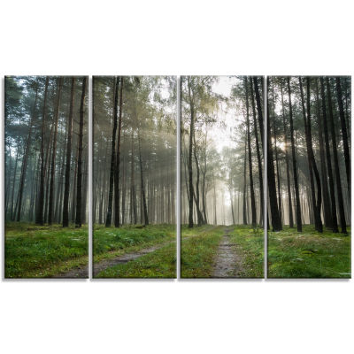 Footpath In Foggy Forest At Sunset Modern Forest Canvas Art - 4 Panels