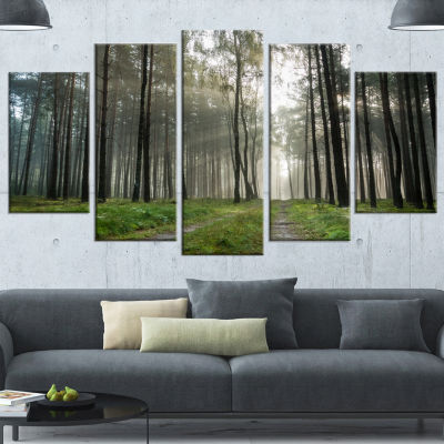 Designart Footpath In Foggy Forest At Sunset Modern Forest Canvas Art - 5 Panels