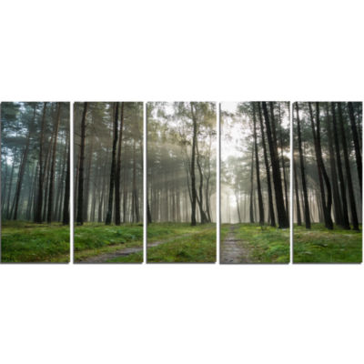 Footpath In Foggy Forest At Sunset Modern Forest Canvas Art - 5 Panels
