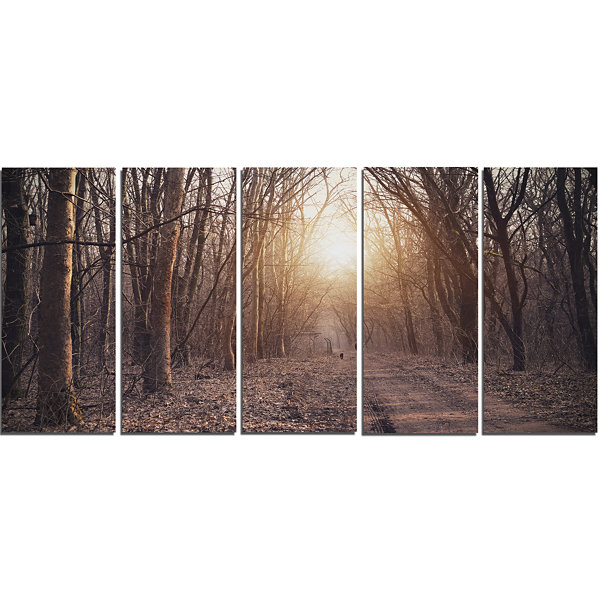 Designart Forest Pathway View At Sunset Modern Forest CanvasArt - 5 Panels