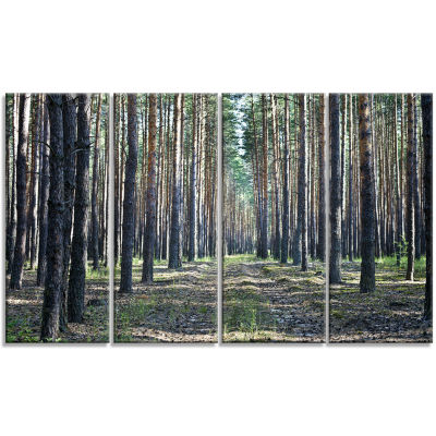 Forest Road In Thick Woods Modern Forest Canvas Art - 4 Panels