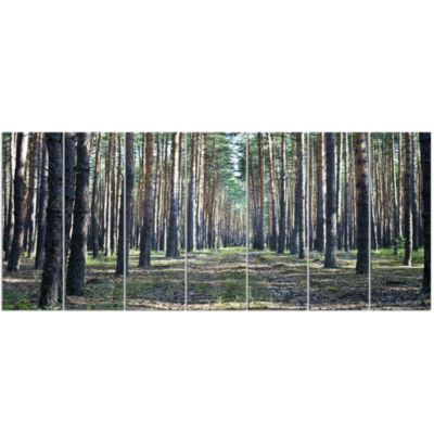 Forest Road In Thick Woods Modern Forest Canvas Art 7 Panels