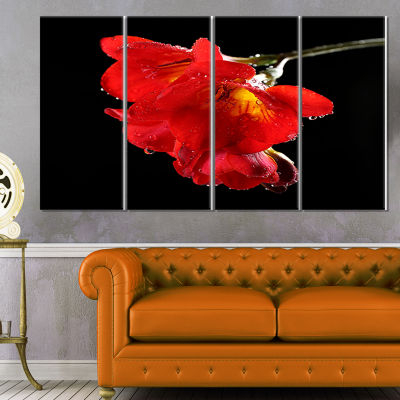 Designart Freesia Flower On Black Background LargeFloral Canvas Artwork - 4 Panels