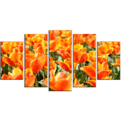 Fresh Tulip Flowers On Sunny Day Floral Art Wrapped Canvas Print - 5 Panels