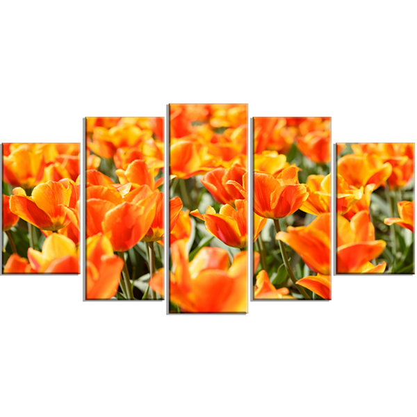 Designart Fresh Tulip Flowers On Sunny Day FloralArt Wrapped Canvas Print - 5 Panels