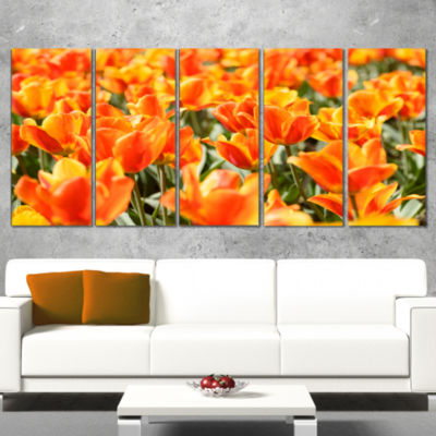 Fresh Tulip Flowers On Sunny Day Floral Art CanvasPrint - 5 Panels