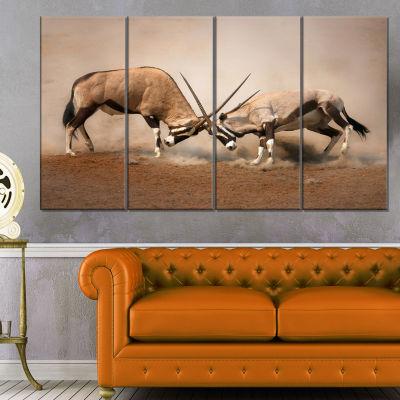 Gemsbok Antelopes Fighting African Wall Art Print- 4 Panels