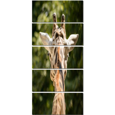 Designart Giraffe Head Back View Abstract Canvas Art Print -5 Panels