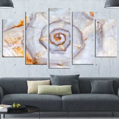 Designart Great Skeleton Of Sea Shell Oversized Animal Wrapped Wall Art - 5 Panels