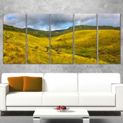 Designart Green Everywhere Horton Plains LandscapeCanvas Art Print - 4 Panels