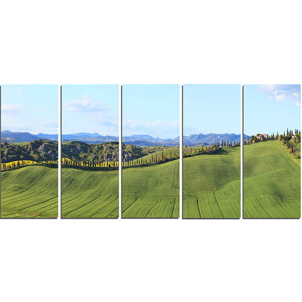 Designart Green Field With Cypress Trees PanoramaOversizedLandscape Wall Art Print - 5 Panels