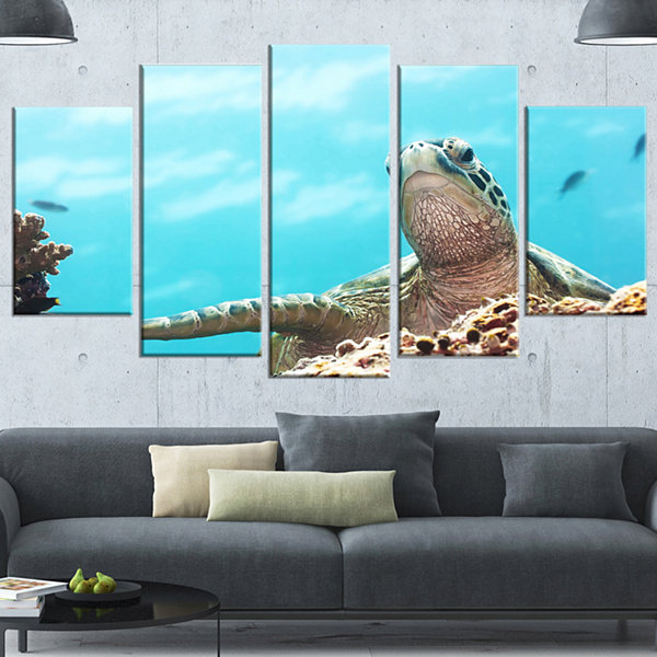 Designart Green Turtle Underwater View Oversized Animal Wrapped Wall Art - 5 Panels