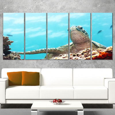Designart Green Turtle Underwater View Oversized Animal WallArt - 5 Panels