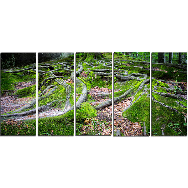 Designart Green Wild Deep Moss Forest Landscape Canvas Art Print - 5 Panels