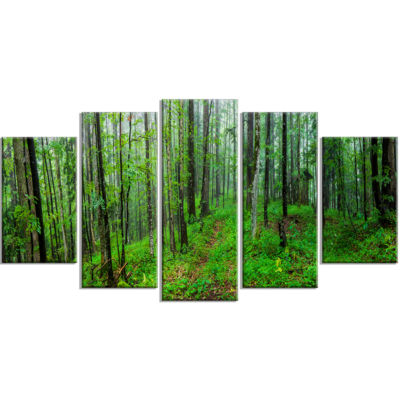 Green Wild Forest With Dense Trees Forest WrappedCanvas Art Print - 5 Panels