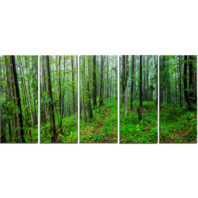 Green Wild Forest With Dense Trees Forest Canvas Art Print - 5 Panels