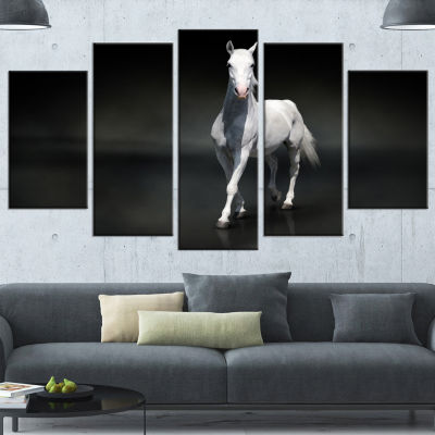 Isolated Black Horse On Black Animal Wrapped Canvas Art Print - 5 Panels