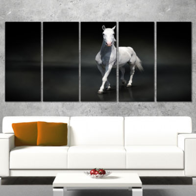 Designart Isolated Black Horse On Black Animal Wrapped Canvas Art Print - 5 Panels