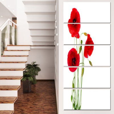 Designart Isolated Red Poppy Flowers Floral CanvasArt Print- 4 Panels