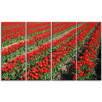Designart Rows of Red Tulip Flowers Floral CanvasArt Print- 4 Panels
