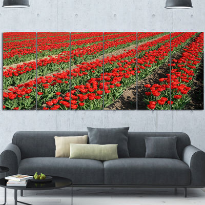 Designart Rows of Red Tulip Flowers Floral CanvasArt Print6 Panels