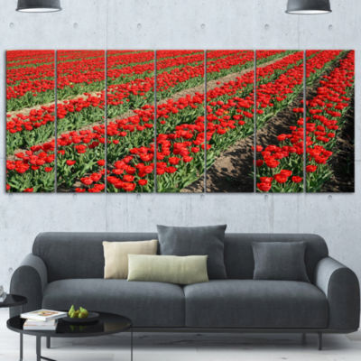 Rows of Red Tulip Flowers Floral Canvas Art Print- 7 Panels