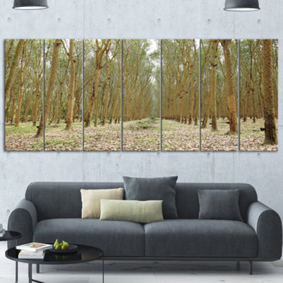 Designart Rubber Trees Row in Thailand Modern Forest CanvasArt - 4 Panels