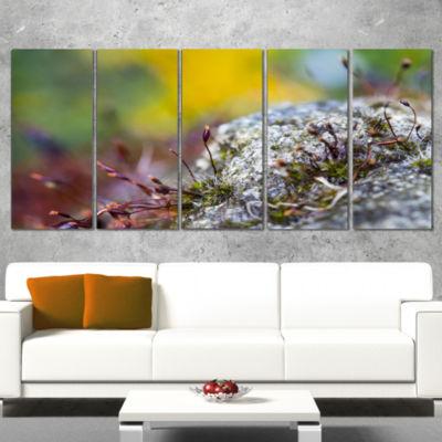 Designart Abstract Composition of Moss Flowers Modern Landscape Wall Art Canvas - 4 Panels