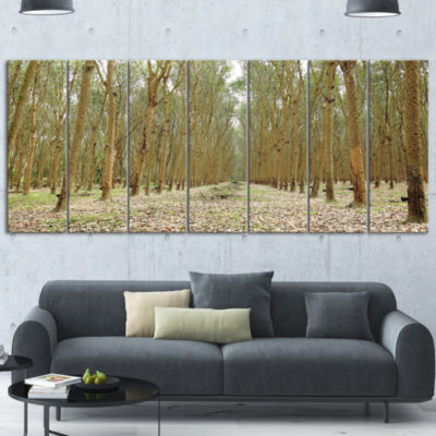 Designart Rubber Trees Row in Thailand Modern Forest CanvasArt - 7 Panels