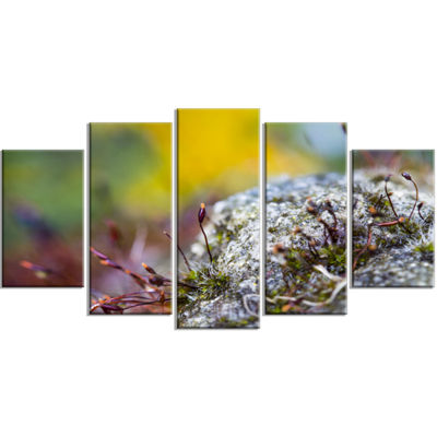 Designart Abstract Composition of Moss Flowers Modern Landscape Wall Art Wrapped Canvas - 5 Panels