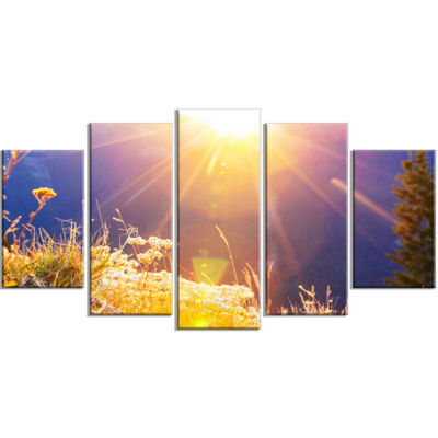Designart Rural Meadow Flowers at Sunset LandscapeWrapped Art Print - 5 Panels
