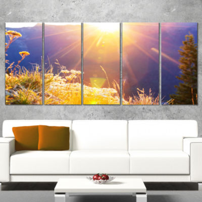 Designart Rural Meadow Flowers at Sunset LandscapeCanvas Art Print - 5 Panels