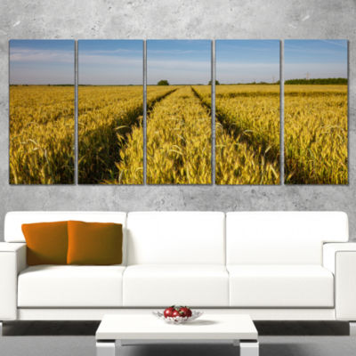 Designart Rural Road Through Wheat Field LandscapeArtwork Wrapped - 5 Panels