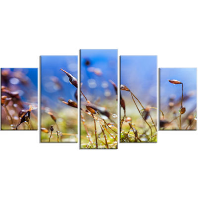 Designart Abstract Summer Spring Moss Flowers Modern Landscape Wall Art Wrapped Canvas - 5 Panels