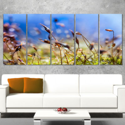 Abstract Summer Spring Moss Flowers Modern Landscape Wall Art Wrapped Canvas - 5 Panels