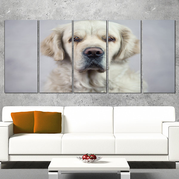 Designart Sad Looking Beautiful Dog Animal CanvasArt Print- 4 Panels