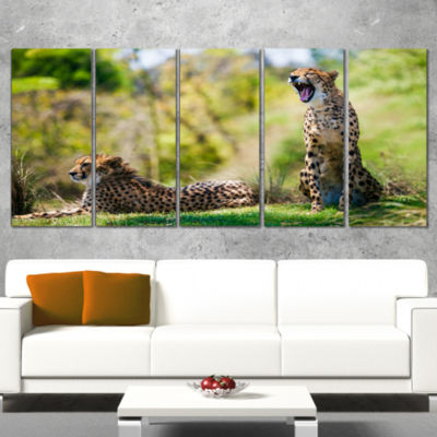 Designart African Cheetahs Relaxing in Grass African Wrapped Canvas Art Print - 5 Panels