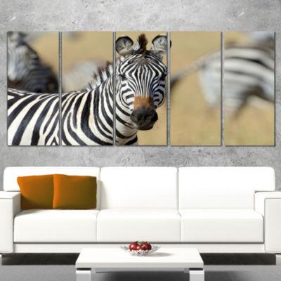 Designart African Zebra Close Up View African Wrapped Canvas Art Print - 5 Panels