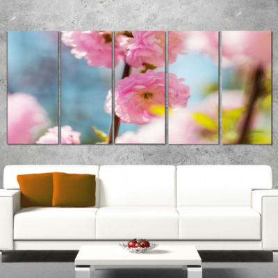 Designart Almond Tree Pink Flowers Large Flower Wrapped Canvas Wall Art - 5 Panels