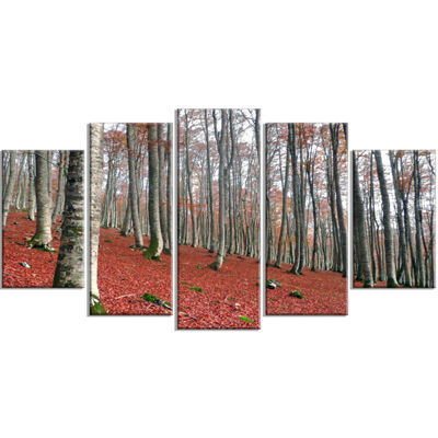 Designart Serene Fall Forest with Red Ground Modern Forest Wrapped Art - 5 Panels