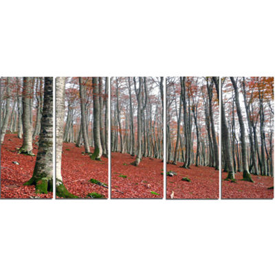 Designart Serene Fall Forest with Red Ground Modern Forest Canvas Art - 5 Panels