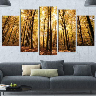 Designart Setting Sun Over Dense Fall Forest Modern Forest Wrapped Art - 5 Panels