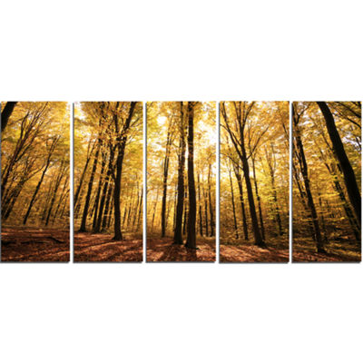 Designart Setting Sun Over Dense Fall Forest Modern Forest Canvas Art - 5 Panels