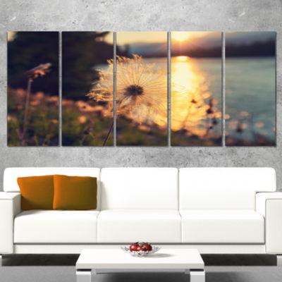 Designart Arctic Cotton Flowers at Sunset FloralWrapped Canvas Art Print - 5 Panels