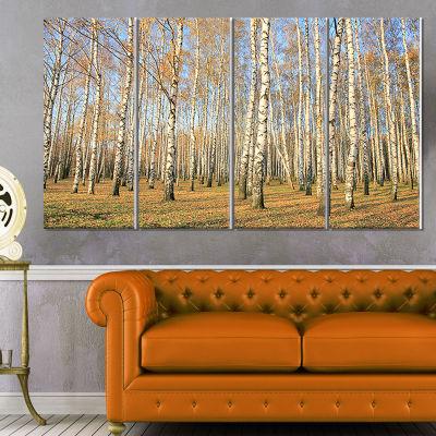 Designart Autumn Birch Grove in Sunlight Modern Forest Canvas Art - 4 Panels