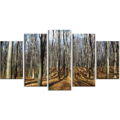 Shade From Sun in Autumn Forest Modern Forest Wrapped Art - 5 Panels